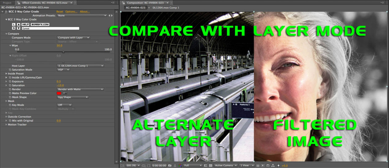 Compare With Layer
