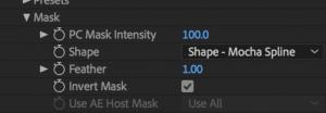 Mask Parameters