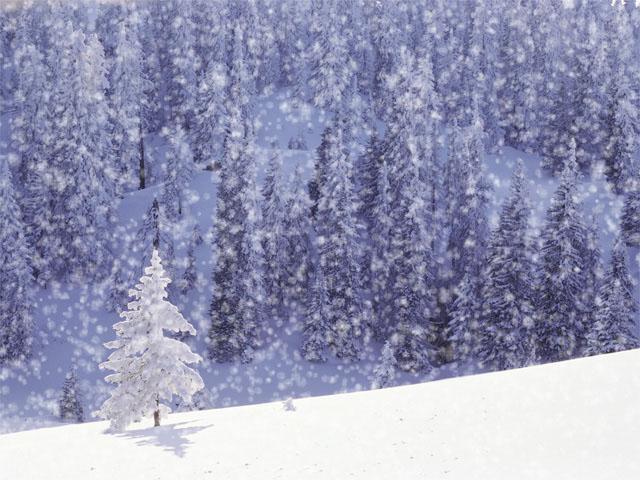 snow.comp.depth.neg.150