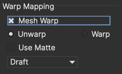 warp mapping parameters